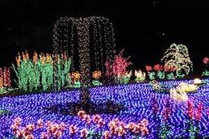 25th Annual Garden d'Lights