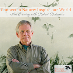 Connect in Nature: Inspire our World - an evening with Robert Bateman