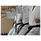 Midwest Karate