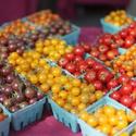 King Farmers Market