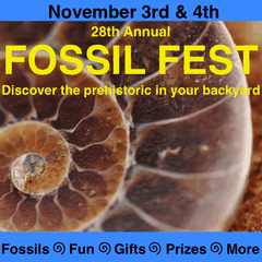 Fossil Fest