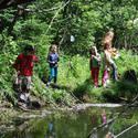 Animal Tracks & Sign - Workshop and Field Walk