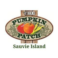 The Pumpkin Patch on Sauvie Island