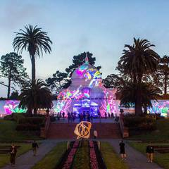 Holiday Lights at SF Conservatory - Night Bloom