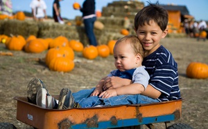 Top 5 Corn Mazes and Pumpkin Patches Around Calgary