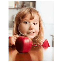 The Apple Tree Preschool
