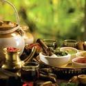 Ayurvedic Courses in India
