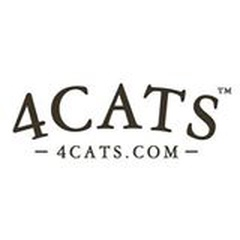 4Cats Arts Studio EVANSTON