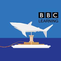 STEM Saturday: How do Sharks Swim?