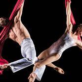Cirque & Symphony