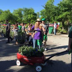 Spring Native Plant Sale Fundraiser