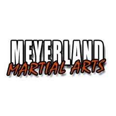 Meyerland Martial Art Center