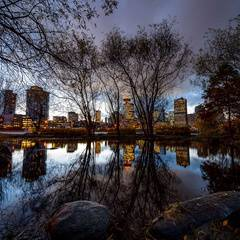 Surviving Vancouver: Gathering in our City