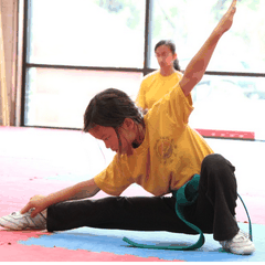 Pure Shaolin Kung Fu Learning Center