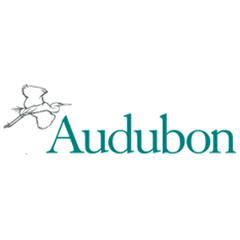 Audubon Adventure Camp