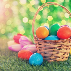 The Lion's Easter Extravaganza at Gorge Park