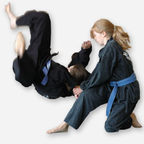 Bay Area Martial Arts Academy