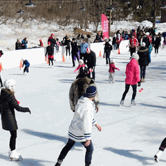 Public Skating at Rideau Hall