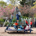Cook Street Playground by Beacon Hill Park