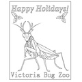 Victoria Bug Zoo's promotion image
