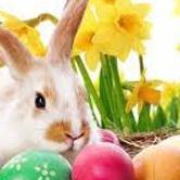 Healthy Kids Day/Easter Egg Hunt