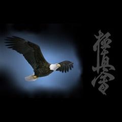 """Friendly Eagle"" Kyokushin Karate School"