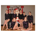 Regina Rhythmic Gymnastics Club