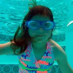 School for Fishes Swim School