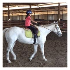 Alta Vista Equestrian Center