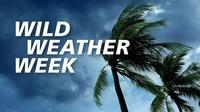 Wild Weather Week