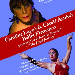 Carolina Lugo's Ballet Flamenco Dance Company & Dance Center