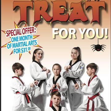Robinson's Taekwondo's promotion image