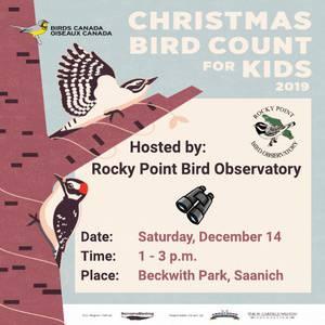 Christmas Bird Count for Kids 2019