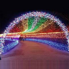 Roosevelt Epic Holiday Light Show v2.0