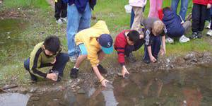 Trout in The Classroom Teacher Training 2020- East Bay