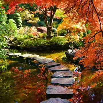 Butchart Gardens's promotion image