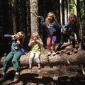 Adventure WILD's promotion image