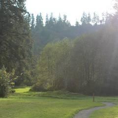 Evans Creek Preserve