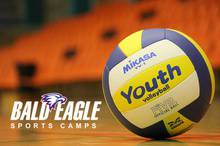 Bald Eagle Volleyball Skills Clinic