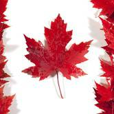 19th annual Gorge Canada Day