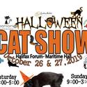 Halloween Cat Show