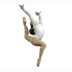 Rodina Elite Gymnastics Academy