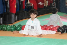 Taekwondo & Karate Summer Special