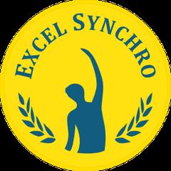Excel Synchro