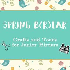Spring B(r)eak: Crafts & Tours for Junior Birders