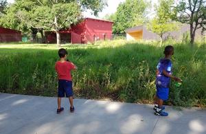 Educator Workshop: Prairie Ecosystems of North Texas