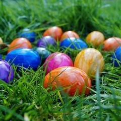 Family Fun: Easter Egg Hunt