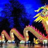 Zoolumination - Chinese Festival of Lights