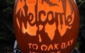 Pumpkin Art on Oak Bay Avenue