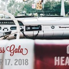 Red Dress Gala 2018